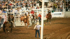 Rodeo bareback bronco ride P HD 1147 Stock Footage