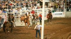 Rodeo bareback bronco ride P HD 1147 - stock footage