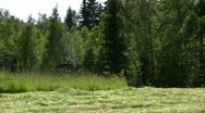 Hay harvest, cut Stock Footage