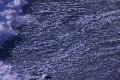 California Coasts Big Sur McWay Fall HS 12 Ocean Loop Footage