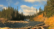 Stock Video Footage of River in Yellowstone National Park Zoom In