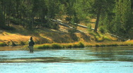 Fly Fisherman on Yellowstone River Stock Footage