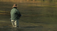 Stock Video Footage of Fly Fisherman in River