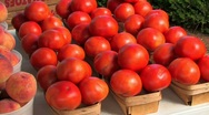 Stock Video Footage of Freshly picked farm vegetables tomato peaches potatoes
