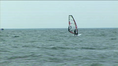Sailboard in a sea bay. Seagull accompanies the sportsman Stock Footage
