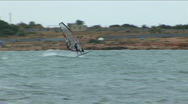 Stock Video Footage of 	Sailboard in a sea bay. Seagull accompanies the sportsman