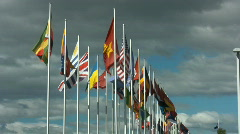 Flags on the wind Stock Footage