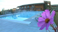 Stock Video Footage of Flower Beside Steaming Pool