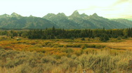 Grand Tetons in Fall Wide Stock Footage