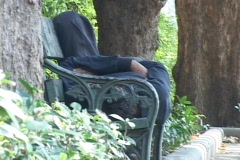 Homeless Man Asleep on a Park Bench Stock Footage