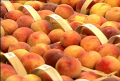 Peaches for Sale 038 Stock Footage