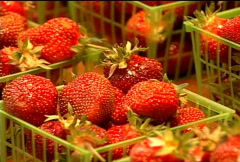 Fresh Strawberries for Sale 066 Stock Footage