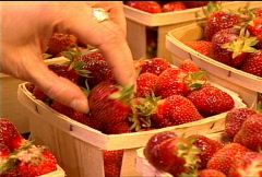 Fresh Strawberries for Sale 067 Stock Footage