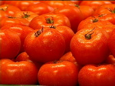 Stock Video Footage of Fresh Tomatoes for Sale 069