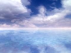 Morning Swim - stock footage