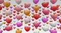 heart in bb HD Footage