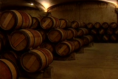 HW wine barrel room 01 Stock Footage