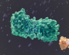 Molecules structure PAL Stock Footage
