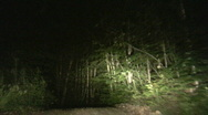 Stock Video Footage of timelapse of car driving at night on country road