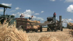 Threshing crew 008 - stock footage