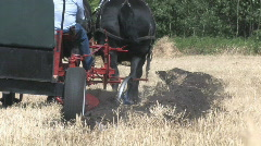 Two horses plowing 003 Stock Footage