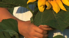 Girl With Sunflowers Stock Footage