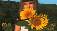 Smell The Sunflowers Stock Footage