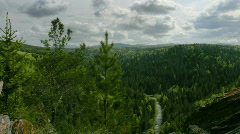 Timelapse forest top view Stock Footage
