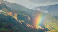 Waimea Canyon with Rainbow Stock Footage