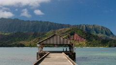 Hanalei Pier - stock footage