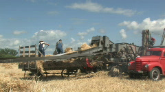 Threshing crew 022 Stock Footage
