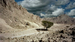 Egyptian desert, time lapse Stock Footage