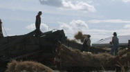 Threshing crew 028 Stock Footage