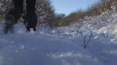 Walkers in the snow Stock Footage