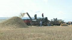 Threshing crew 031 - stock footage