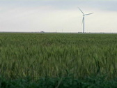 Wind farm 03 Stock Footage