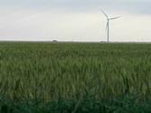 Stock Video Footage of wind farm 03