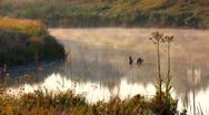Morning fog HD Stock Footage