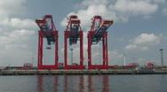 Harbour cranes 5 Stock Footage