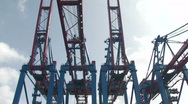 Stock Video Footage of Harbour cranes 1