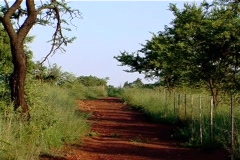 African road with red soil tilt Stock Footage