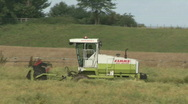 Stock Video Footage of Rape Seed being cut 5