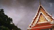 Bat cave and temple in Thailand nr 4 Stock Footage