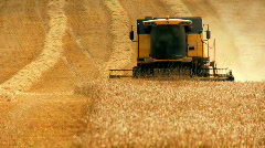 Stock Video Footage of Wheat Harvest
