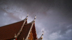 Bat cave and temple in Thailand nr 1 Stock Footage