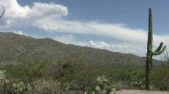 Desert scene in Arizona 3 Stock Footage