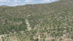 Desert scene in Arizona 6 Stock Footage