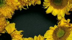 Sunflower Wreath Stock Footage