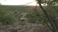 South Africa Jeep Safari 04 Stock Footage