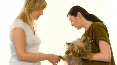 Veterinarian over white background Stock Footage